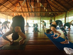 28 Days 200-Hour Vinyasa Yoga Teacher Training in Koh Phangan, Thailand