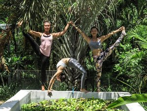 11-Daagse Nieuwjaars Detox, Meditatie en Yoga Retreat in Koh Phangan, Thailand
