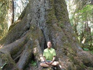3 Day Earth, Mountain, and Sea Yoga Retreat with Liz and Roy in Mason County, Washington