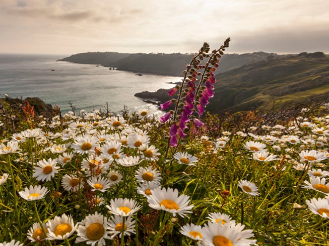 3-Daags Genezing Avontuur Yoga en Meditatie Retraite in Lake District, Verenigd Koninkrijk