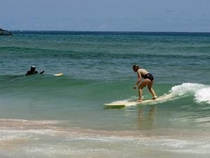 7 Days Accommodation and All Levels Surf Camp in NGor Island, Senegal
