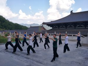 30 Days Authentic Kung Fu Training and Cultivation with warrior monks at Buddhist Temple, China