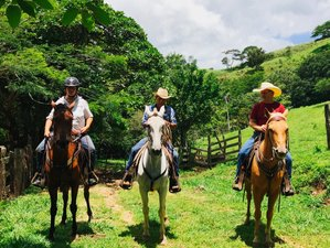 7 Day Adventure Horse Riding Holiday in Miramar, Puntarenas