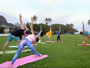 8 Days Joy, Bliss, and Healing Yoga Retreat Hawaii, USA