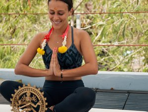 22 Days 200 Hour YA Hatha Vinyasa Yoga Teacher Training in Malinalco, Mexico