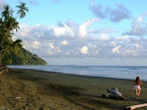 6 Days Yoga Holiday at Tiskita, Costa Rica