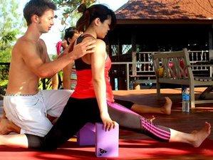 6 Days Anatomy Yoga Retreat in Thailand