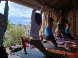 27 Days 200-Hour Immersion to Yogic Lifestyle Yoga Teacher Training in Baja, Mexico