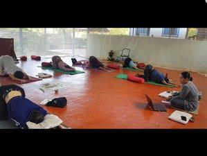 7 Tage 50 Stunden Yin Yogalehrer Ausbildung in Karnataka