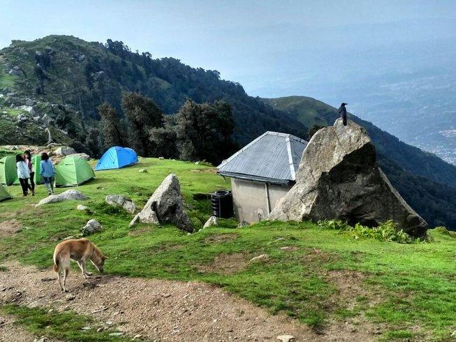 6 jours en stage de yoga, reiki et randonnée dans l'Himalaya, Inde