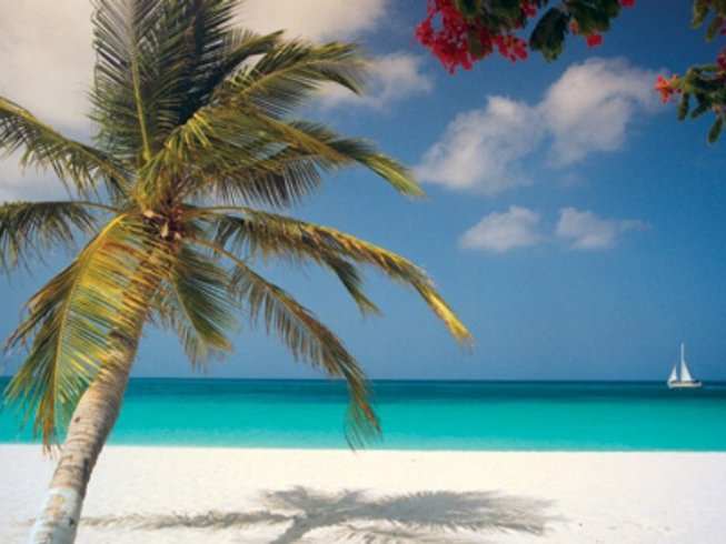 6 Days Pampering Yoga Retreat in Aruba