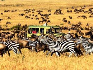 5 Days Group Lodge Safari in Tanzania Visiting Tarangire, Serengeti, Ngorongoro, and Lake Manyara