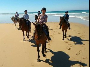 8 Days Beach and Great South Desert Riding Holiday in Agadir, Morocco