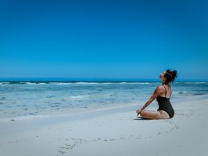 6 Day Online Mindfulness Meditation for Super Performance Masterclass with Naturbliss