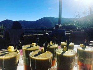 8 Day Juice Detox Retreat with Yoga in Pineda de Mar, Costa Brava