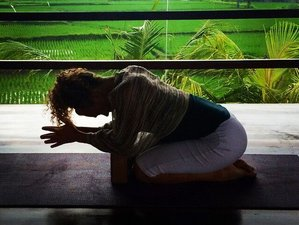 Satiate Your Soul - 8 Days Women's Wellness and Yoga Retreat in Bali, Indonesia
