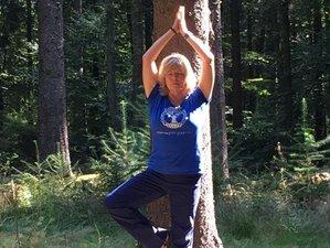 8 Tage Sanftes Yoga und Waldbaden Inspiriert Körper und Geist in Hermsdorf, Erzgebirge