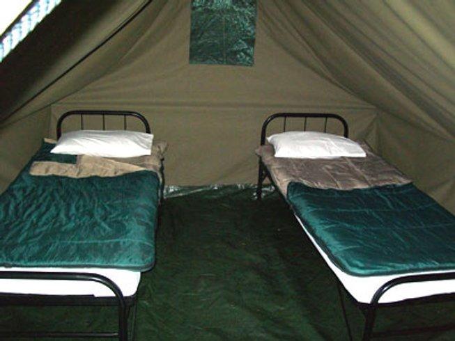 5 Days Kruger National Park Wildlife Safaris