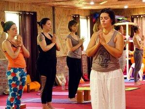 21 Days 300-Hours Yoga Teacher Training in Aukstaitija, Lithuania