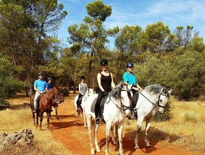 8 Days Extraordinary Horse Riding Holiday Andalucia, Spain