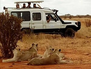 3 Days Tsavo East and Tsavo West Safari in Kenya