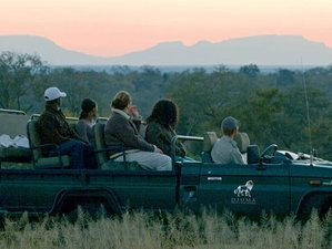 2 Days Wildlife Safari South Africa
