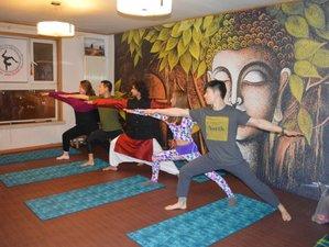 13 Days 100-Hour Traditional Hatha, Ashtanga Yoga Teacher Training in Rishikesh, India