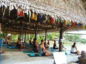 3 días retiro de yoga y vida saludable en Ko Phangan, Tailandia