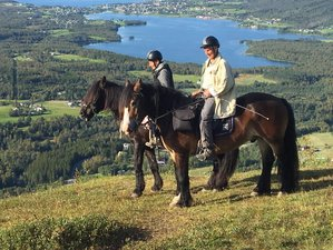 3 Day Weekend Viking Horse Riding Holiday in Troms, Norway