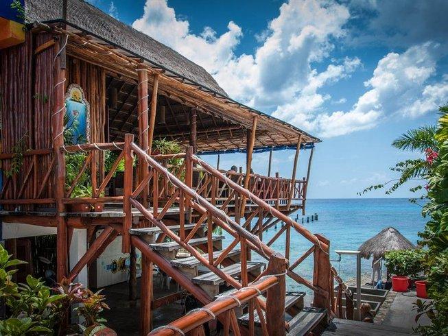 8 Days Scuba Adventure and Yoga Retreat in Cozumel, Mexico