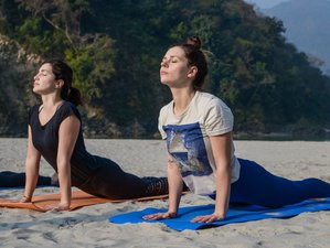 28 Days 200 Hours Multi Style Yoga Teacher Training in Rishikesh