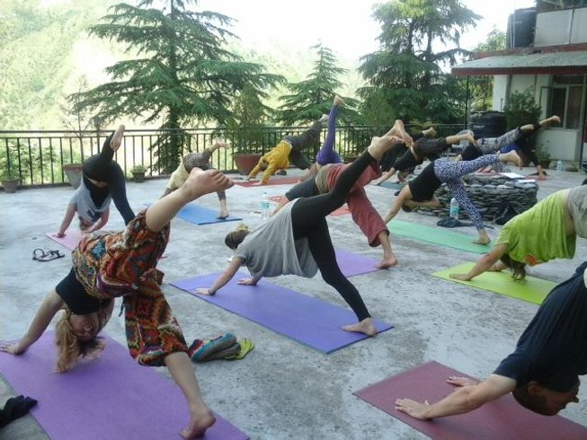 14 Days Meditation and Wellness Yoga Retreat in India