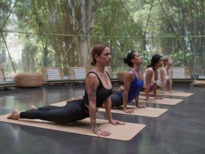 4 Day Bespoke Meditation and Chakra Yoga Retreat in Byron Bay