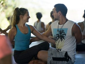 26 Day 300-Hour Yoga Teacher Training in Maui, Hawaii