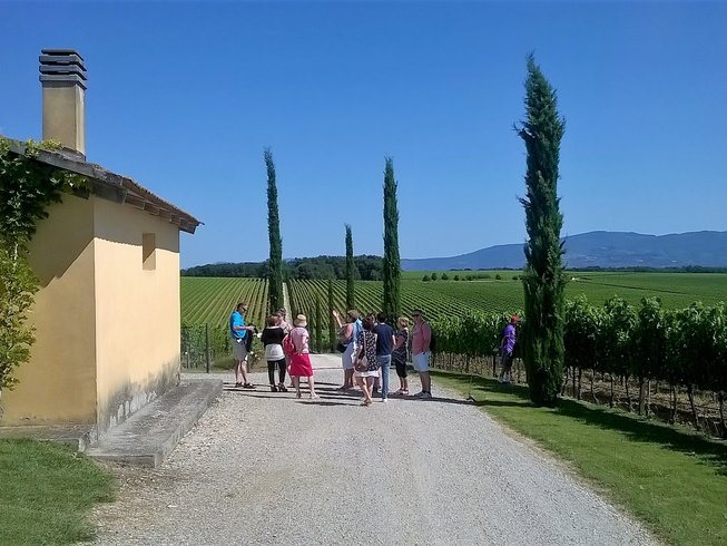 4 Days Cooking and Wine Holidays in Tuscany