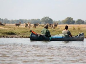 6 Days Kariba to Mana Pools Fisheagle Canoe Safari Zambezi River, Zimbabwe