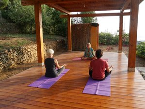 Online Meditation, Yoga, and Mudra Healing Course for Your Immunity Booster