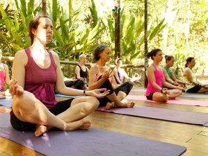 6-Daagse Sapkuur en Yoga Retraite in Costa Rica