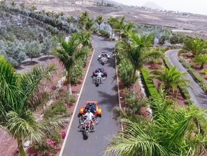 7 Day Trike Guided Round Trip in Canary Islands, Spain