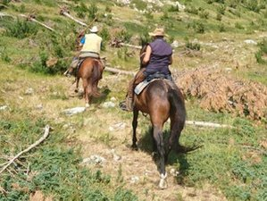 8 Day Mountain Trail Horse Riding Holiday for Advanced Riders in Abruzzo, Province of Teramo