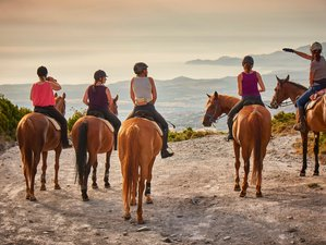 7 Days Mare and Monti Horse Riding Holiday in Sardinia, Italy
