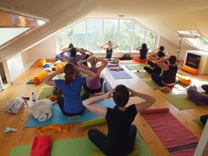6 Days Summer Yoga Retreat Poland