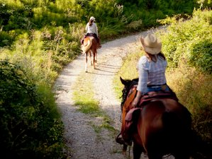 8 Days Taste of Trekking Horse Riding Holiday in Tuscany, Italy