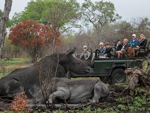 16 Days Conservation Safari South Africa