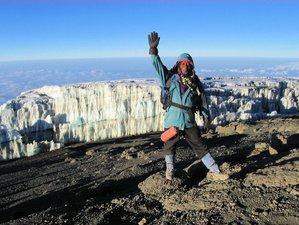 8 Days Mount Kilimanjaro Treks via Lemosho Route