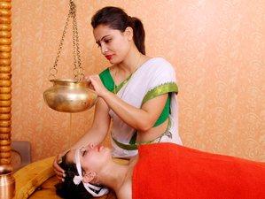 14 Day Ayurveda Vata Pitta Kapha Tridosha Balancing Detox Wellness Yoga Retreat in Rishikesh