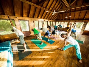 7 Days Meditation and Yoga Retreat Fiji