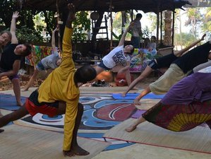 33 Day 300-Hours Yoga Teacher Training in Goa
