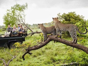 "11 Days ""Wildlife Trail"" Safari South Africa, Zimbabwe, and Botswana"
