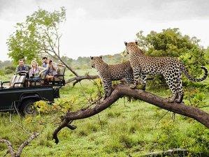 11 Days Wildlife Trail Safari South Africa, Zimbabwe, and Botswana